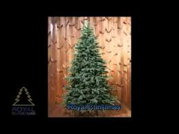 ЕЛЬ <b>ROYAL CHRISTMAS</b> DELAWARE - YouTube