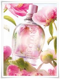 <b>L'occitane en Provence Pivoine</b> Delicate Collection