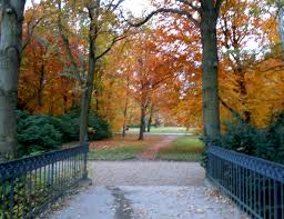 photo essay autumn in tiergarten berlin from love dscn2294
