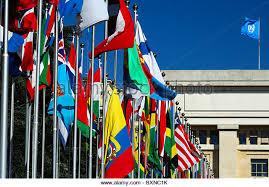 Image result for united nations flag