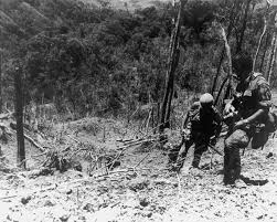 Battle of Hamburger Hill