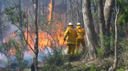 Fire management - Department for Environment and Water