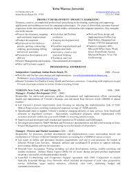 marketing manager resume examples legal resume samples uk managing    web developer resume key skills product development manager resume in tampa bay fl by
