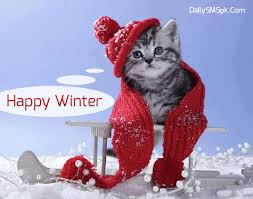 Image result for winter images