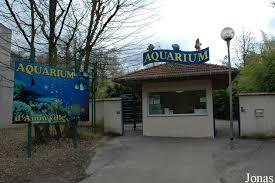 """Résultat de recherche d'images pour """"photo aquarium amneville"""""""