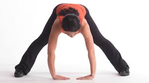 Image result for hamstring stretches