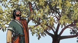 Jesus and Fig Tree Story