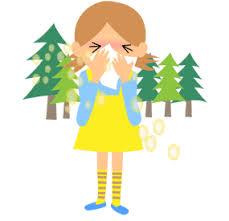 「花粉 イラスト」の画像検索結果