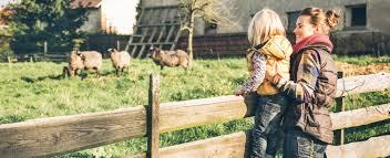 animal farm oppression essay < essay academic writing service animal farm oppression essay