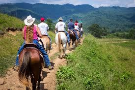 <b>Horseback Riding</b> Asheville NC