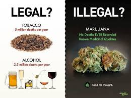 Weed Memes Legal vs illegal food for thought - Weed Memes via Relatably.com