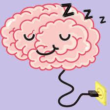 Sleep Science Podcast