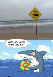Shark - www.meme-lol.com | Murky Waters | Pinterest | Sharks ... via Relatably.com