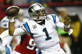 Image result for panthers cardinals