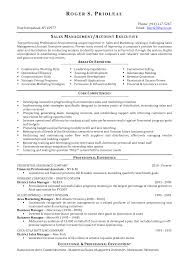 executive resume samples account executive resume samples