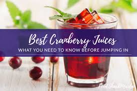 The 8 <b>Best</b> Cranberry Juices for Your Superfruit Fix | Food Shark Marfa