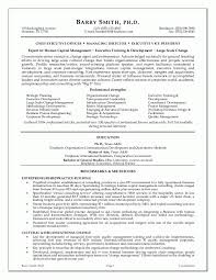 ceo or executive resume sample resume executive