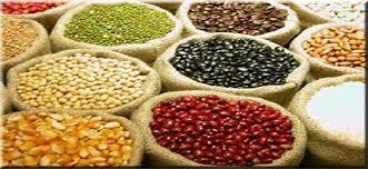 Resultado de imagem para RN fica em penúltimo lugar na produção nacional de grãos