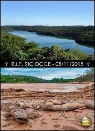 Resultado de imagem para RIO DOCE MORREU 2015 DESASTRE DE MARIANA