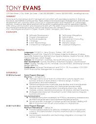 professional it management templates to showcase your talent resume templates it management