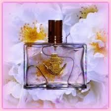 <b>Le Prince Jardinier</b> - <b>Bouton</b> de Rose | Reviews and Rating