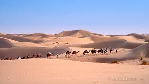 Sahara bilaketarekin bat datozen irudiak