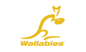 Image result for australia rugby