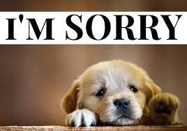 <b>I'm</b> Truly <b>Sorry</b>, From <b>My</b> Depression & Anxiety – YouAreEnough