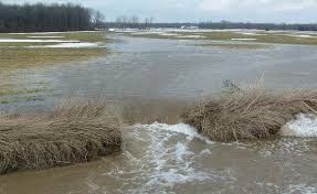 Image result for EFFECTS OF SOIL EROSION