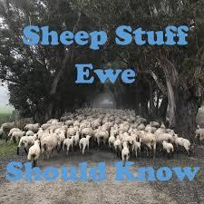 Sheep Stuff Ewe Should Know