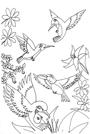 Small Picture Free Printable Hummingbird Coloring Pages For Kids