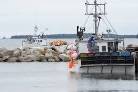 Lobster season drawing to a close off southwestern Nova Scotia and ...
