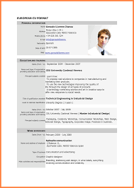 example of curriculum vitae for job application bussines 4 example of curriculum vitae for job application
