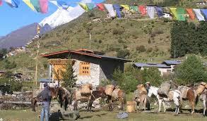 International Mountain Day   IUCN