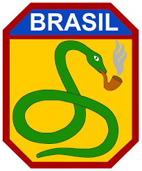 Image result for america invades brazil