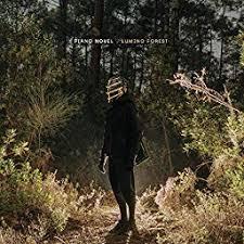 <b>Lumino</b> Forest by <b>Piano Novel</b> on Amazon Music Unlimited