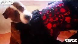 Videos Tagged 'dog sex girl videos' - Free Porn HD Videos - Sex ...