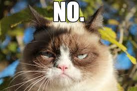 Grumpy Cat Meme No Tumblr - grumpy cat meme no tumblr also Meme ... via Relatably.com
