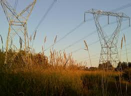 essay eh summer evening walk crossed by power lines the nature trail in bear creek park is lit late light