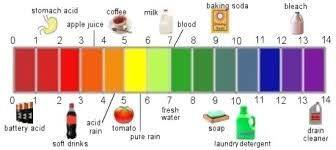 Image result for uses of ph scale