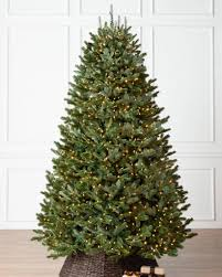 Most Popular Christmas Trees of All Time   Balsam Hill Blog