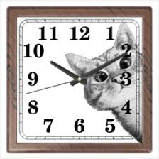 "Часы для офиса c особенными принтами ""<b>cat</b>"" - <b>Printio</b>"
