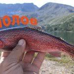 Снасти для рыбалки / Клуб рыбака - все о рыбалке