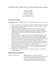 what is resume title examples resume template example resume title example examples examples sample cv title title resume example