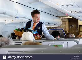 flight attendants airplane stock photos flight attendants male flight attendant stock image
