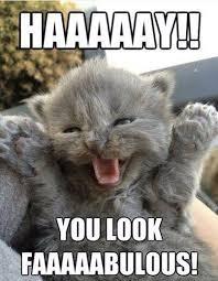 Had a bad day? Here's a meme on Pinterest | Car Memes, Unitards ... via Relatably.com