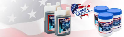 Image result for Equine America