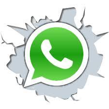 Resultado de imagem para whatsapp png