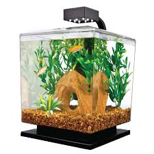 tetra 15 gallon led desktop aquarium kit office desk aquarium