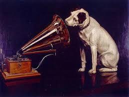Animales SÍ escuchan